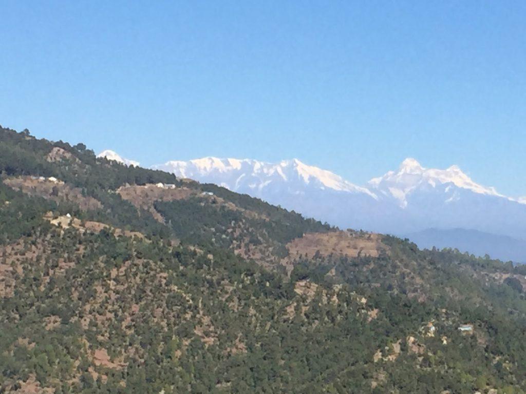 Land Available on Long-Term Lease in Mukteshwar, Nathuakhan