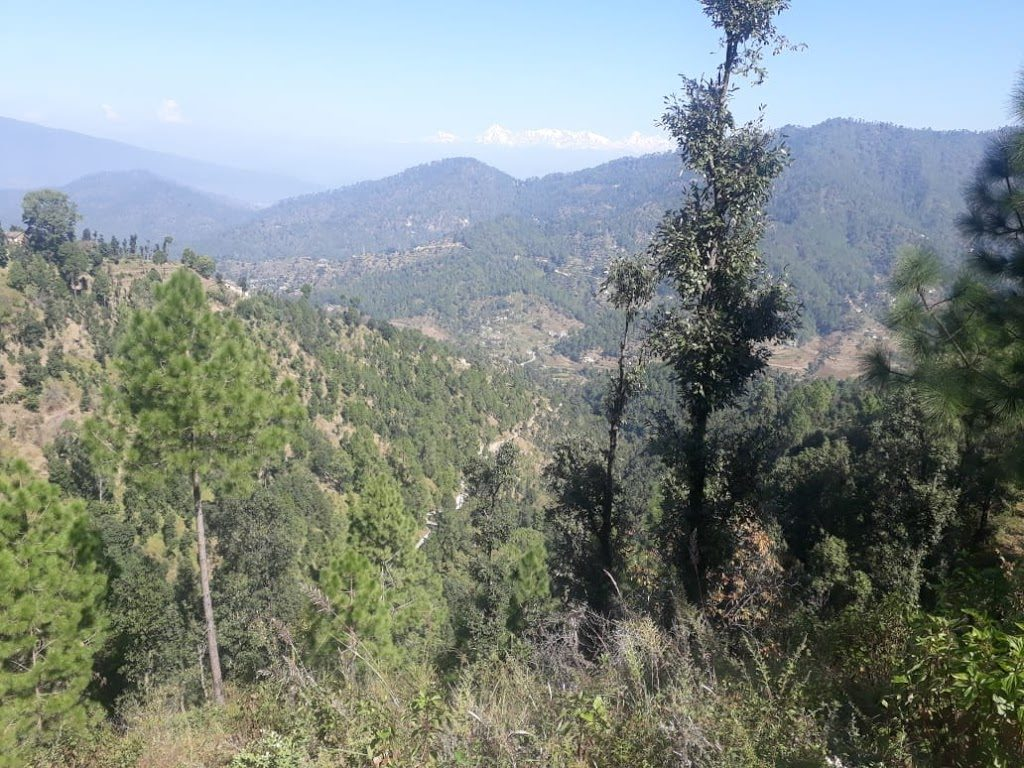 7 Lacs – 6 Nali Himalayan View Land in Nathuakhan
