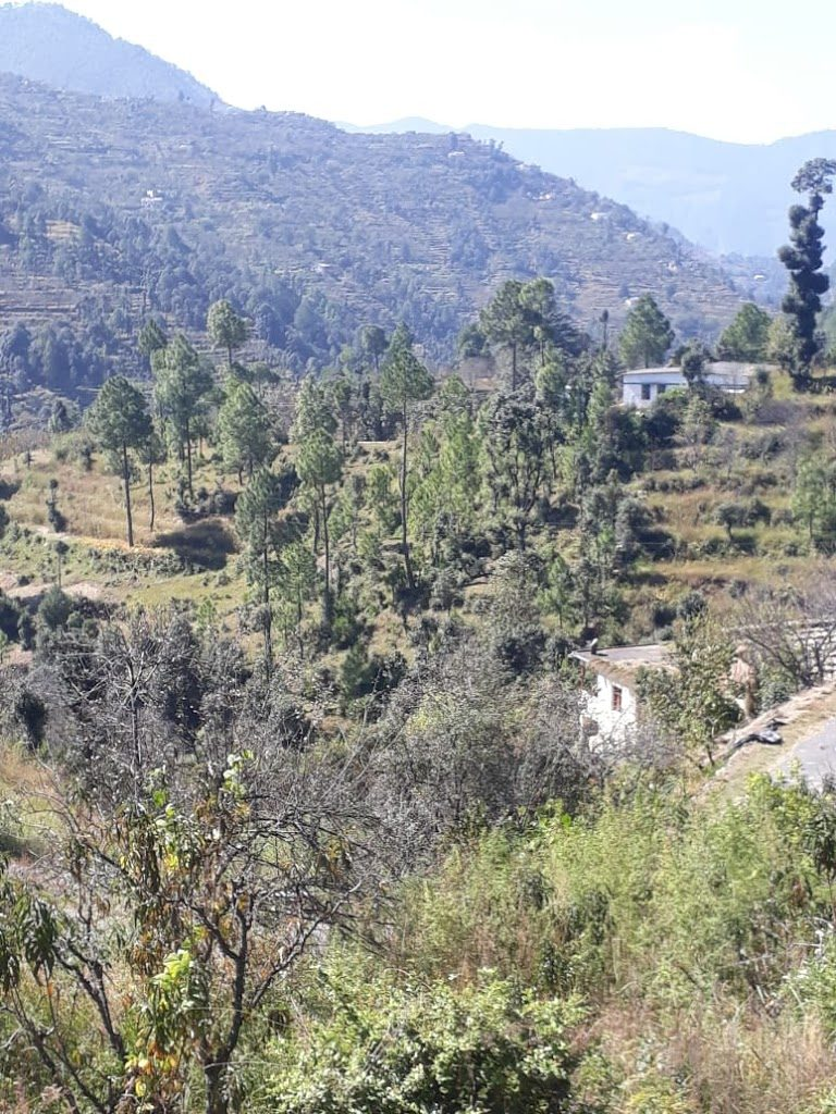 7 Lacs – 4.5 Nali Valley View Land For Sale in Nathuakhan