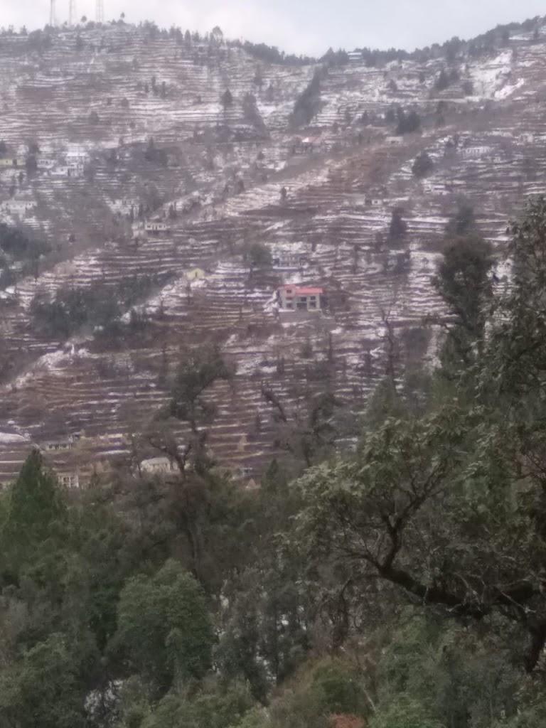 6 lacs – 15 Nalis Residential Himalayan View Land in Hartola