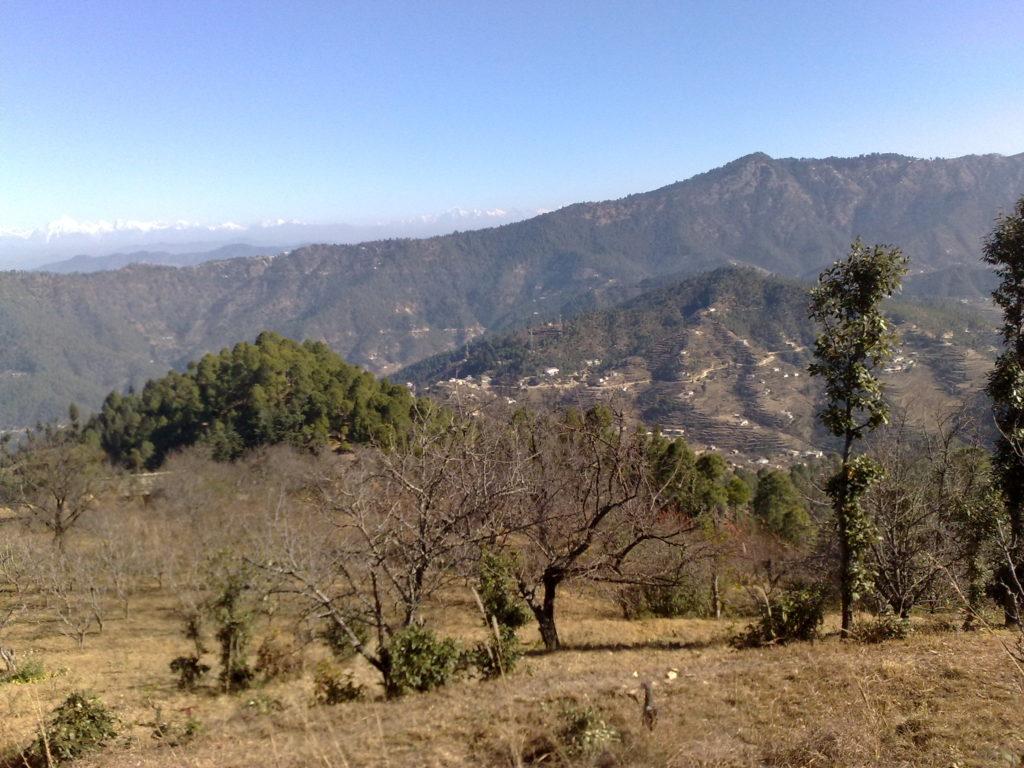 7.1 Lacs – 200 Square Yards Residential Plot in Mukteshwar