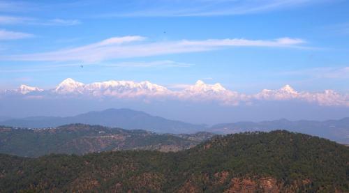48 lacs – 4 Nali Himalayan view land in Bhataliya (Bhatelia), Letibunga in Mukteshwar