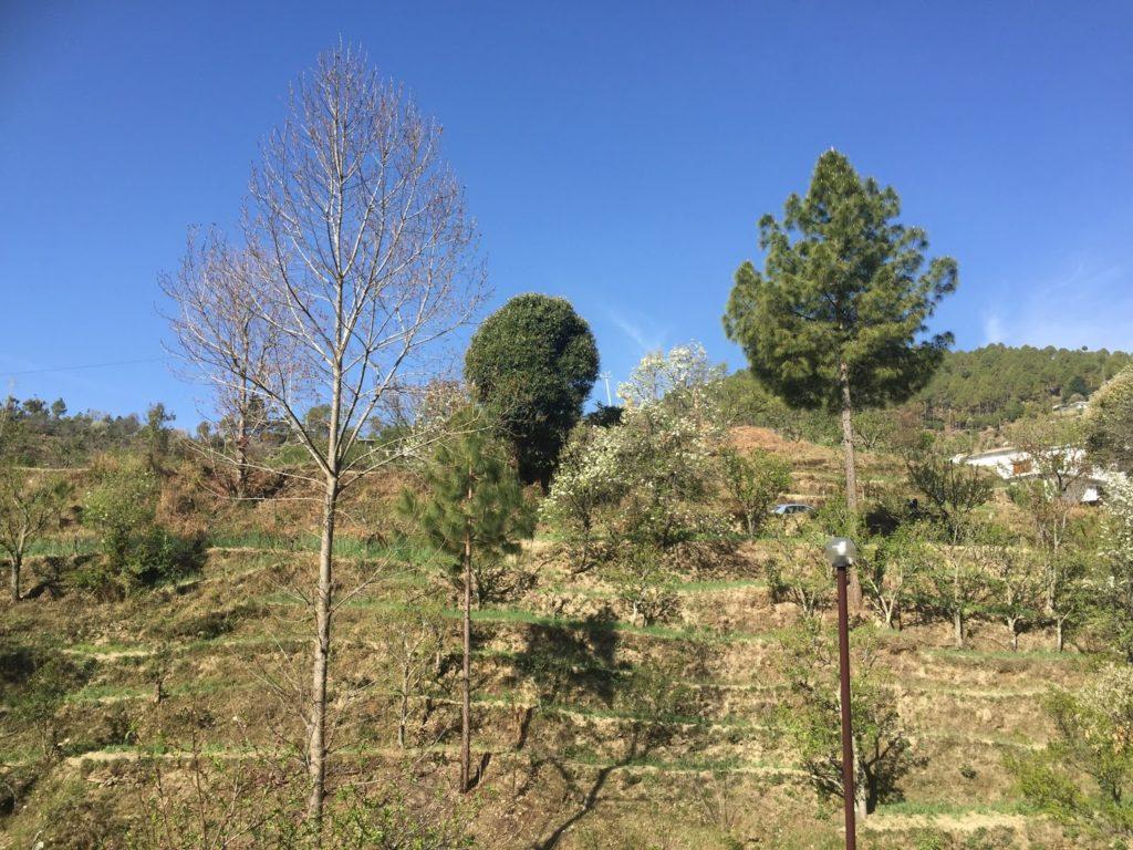 7 lacs – 12 Nali Residential Land Available in Nathuakhan, Uttarakhand