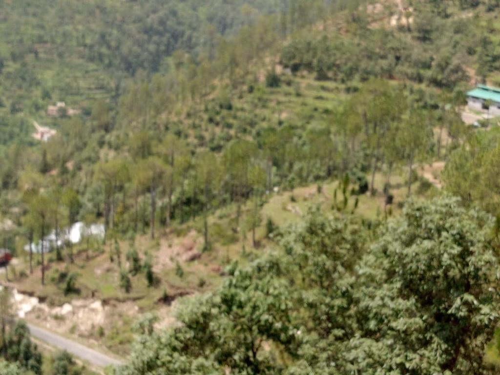 1.6 crore – 20 nali roadside land in Nathuakhan