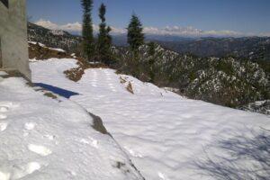 10 lakhs – Himalayan view residential plot in Mukteshwar