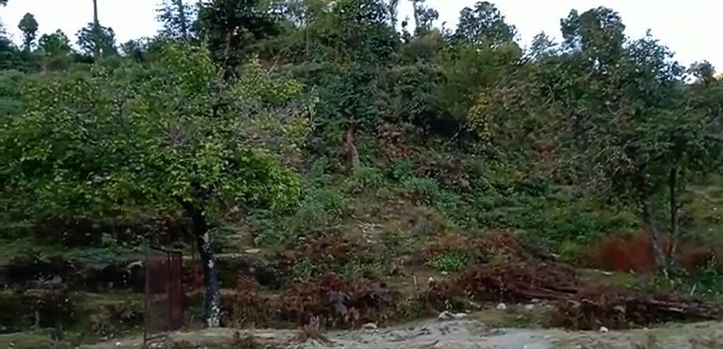 12 lakhs – 20 nali Himalayan view residential plot in Sitla