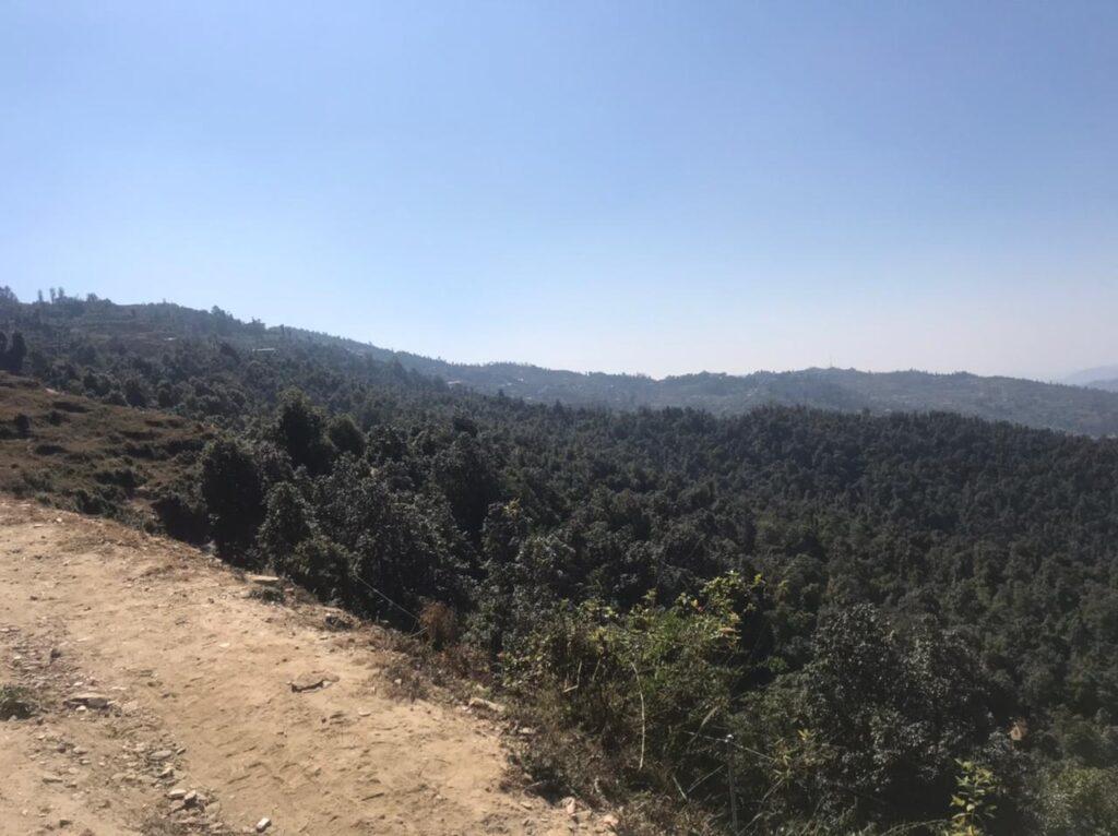 6 nali Himalayan view premium plot in Dhanachuli, Mukteshwar for Rs 2 crore